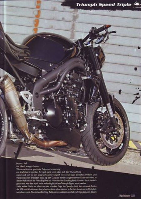 Fighters Triumph Speed Triple Fighters 2012